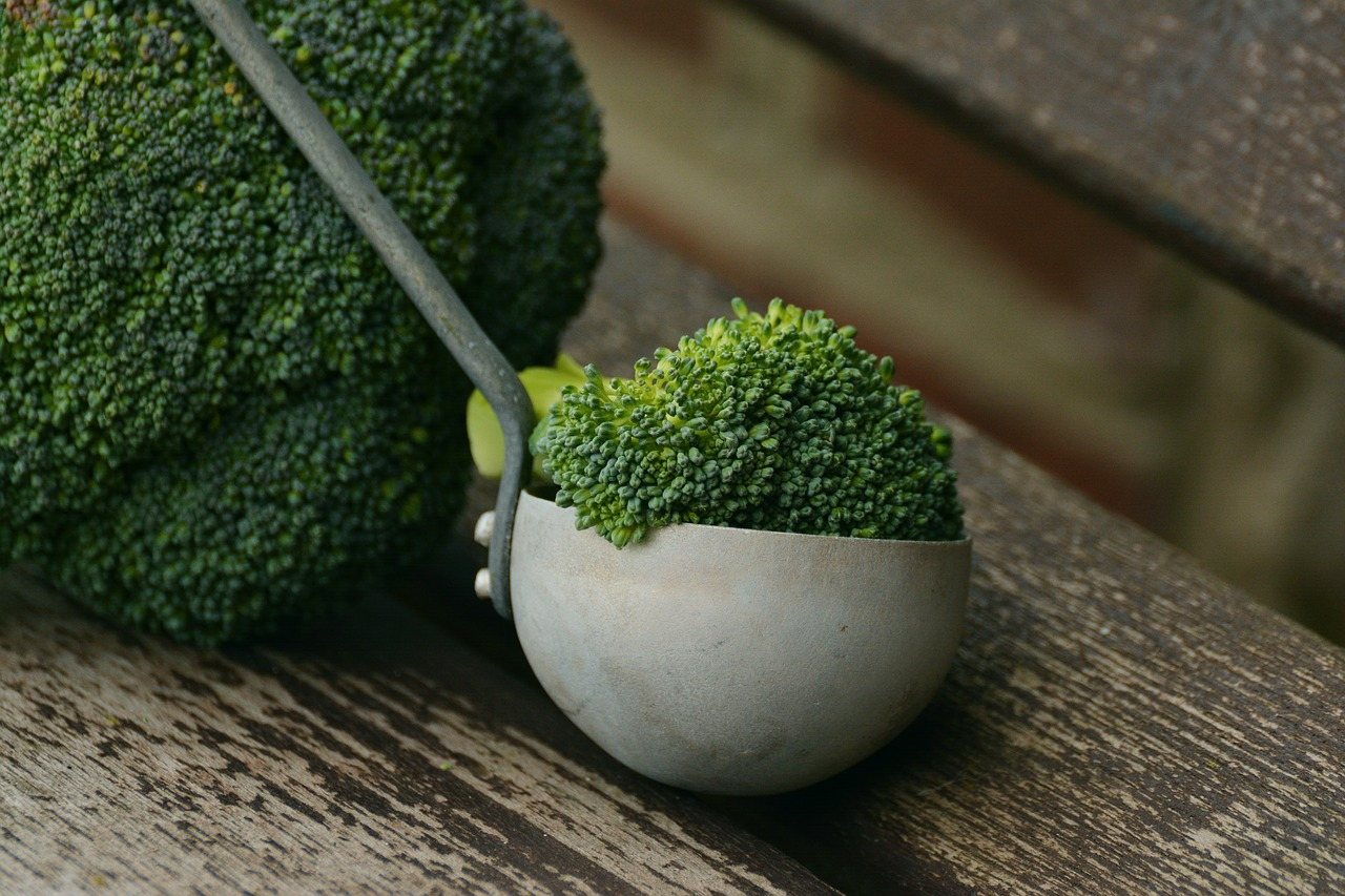 recetas fitness de brocoli